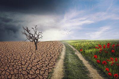 Les annonces pour la convention citoyenne pour le climat